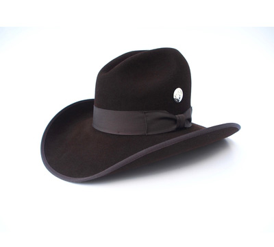 Brown Cowboy Hat