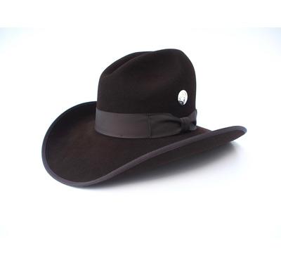Brown Cowboy Hat